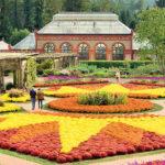 biltmore-fall-garden